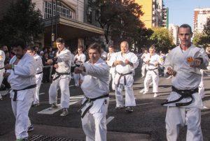 Buenos Aires Celebra Japon 102